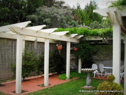Pergola and Wisteria sinensis